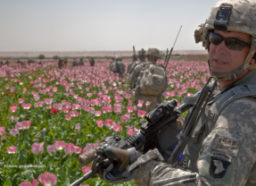 Poppy Fields over Civil Rights?