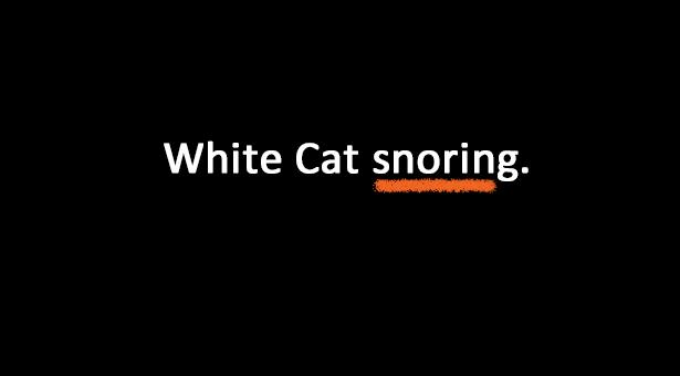 White Cat Snoring